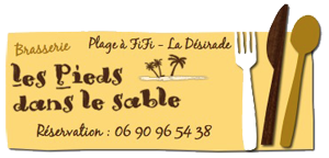 Logo: Les pieds dans le sable