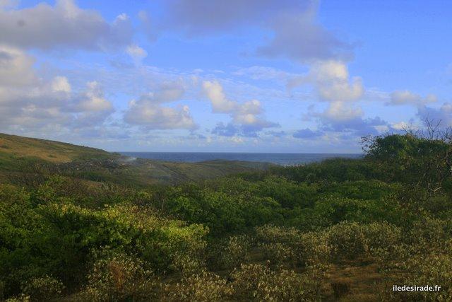 Sentier de La Pointe Doublée - Désirade 97127 Guadeloupe