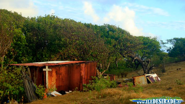 Photo: Cabanne - Sentier de La Pointe Doublée, Est de La Désirade - Guadeloupe