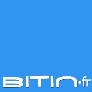 Logo bitin.fr