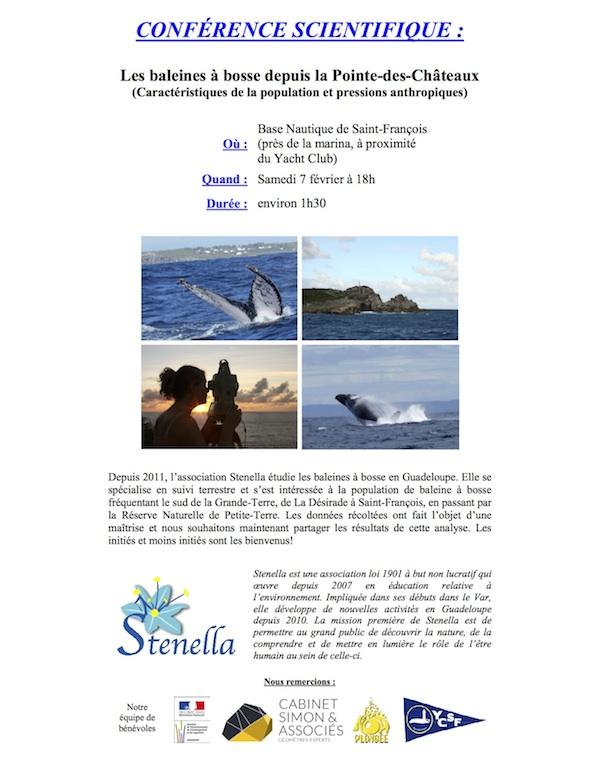 saint-francois_conference_stenella