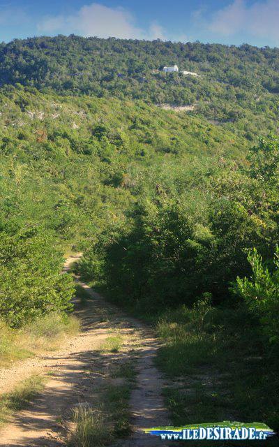 Le Sentier du Grand Nord à La Désirade